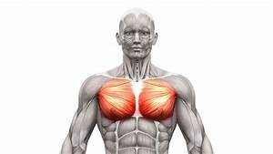 Pulled Chest Muscle  Symptoms  Causes And Treatment