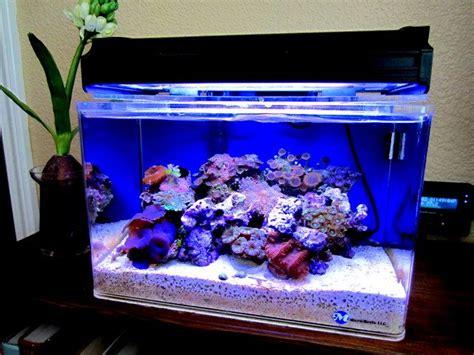 268 best ideas about nano reef aquariums on led aquascaping and saltwater aquarium