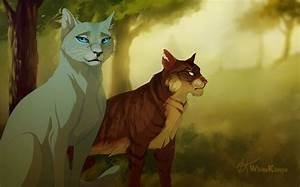 Cats La : forest cats by on deviantart warrior cats la guerre des clans ~ Orissabook.com Haus und Dekorationen