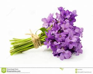 Bouquet Of Violets Stock Photo - Image: 52727912
