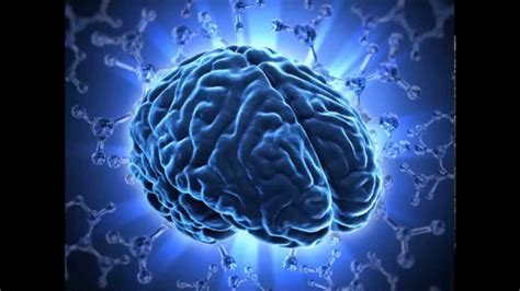 powerup  brain improve focus intellect