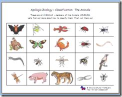 apologia zoology 1 sorting classifying printable
