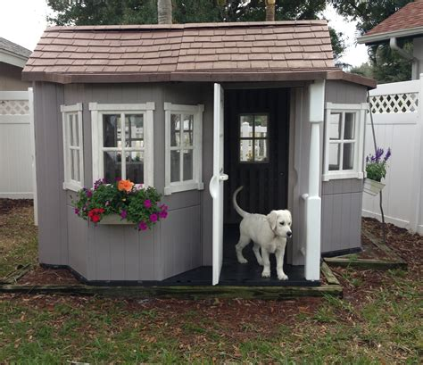 Unusual Kitchen Ideas - your big friend needs a large dog house mybktouch com
