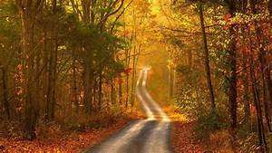Fall Scenery Wallpapers