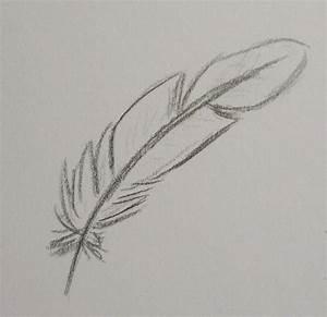 Dessin De Plume Facile : comment dessiner des plumes d oiseaux ~ Melissatoandfro.com Idées de Décoration