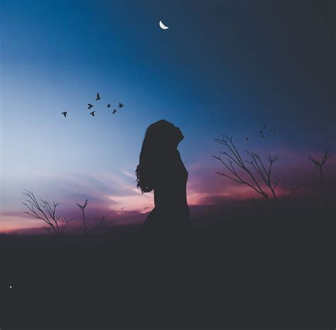 Moon And Clouds Wallpaper Wallpaper Alone Woman Birds Silhouette Hd Fantasy 9662