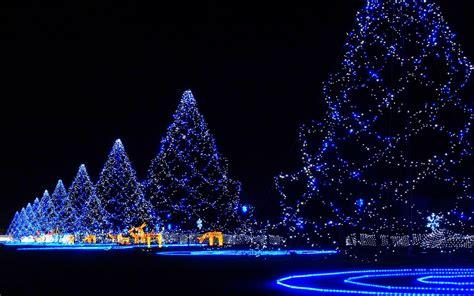 blue christmas christmas decorations christmas lights