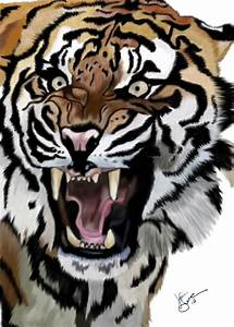 Tiger Growl by Maineac92 on deviantART