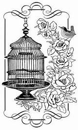 Cage Bird Coloring Birds Birdcage Adult Cages Clip Sheets Stamps Colouring Glass Printable Individuals Crafty Floral Pretty Roses Jaula Stamp sketch template