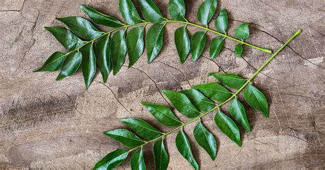 9 Curry Leaf Benefits and Uses