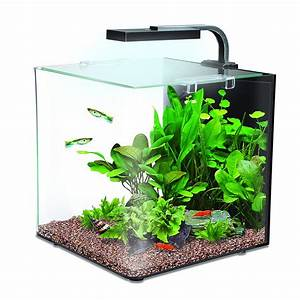 Aquarium Set Led : complete interpet nano led 12 litre aquarium fish tank ~ Watch28wear.com Haus und Dekorationen