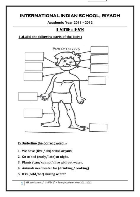 images    school night worksheet