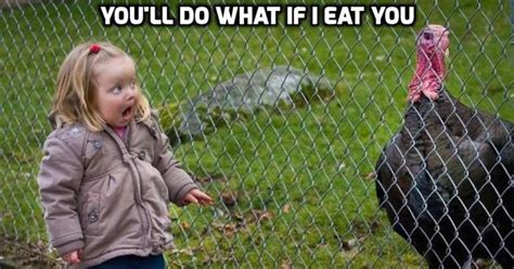Turkey Meme - these 10 turkey memes are perfect for thanksgiving