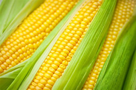 interior home design for small spaces how and when to corn