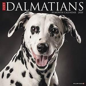 Compare Price  Dalmatian Press Calendar