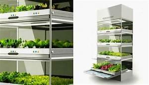 Kitchen Nano Garden – Hyundai Design – Architecture ...
