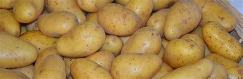 pommes de terre de consommation maison laruelle