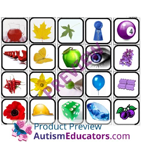 color sorting  objects  autism