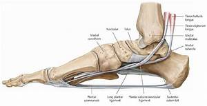 7 Ways To Alleviate Foot Arch Pain  And Some Reasons Why