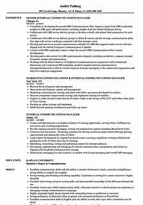 Internal Communications Manager Resume Samples