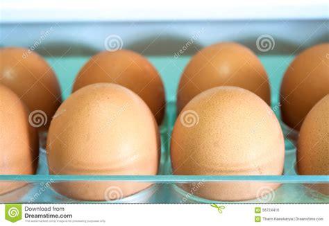 shelf of eggs eggs on a white shelf stock photo image of cool beige