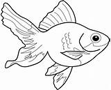 Goldfish Coloring Pages Printable Print Getcolorings Pa Japanese sketch template