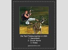 ᐅ Chuck Norris Bilder Chuck Norris GB Pics GBPicsOnline