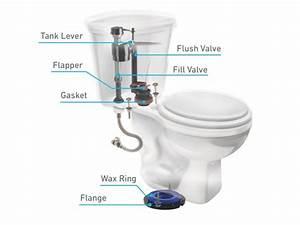 Toilet Parts  U0026 Repair