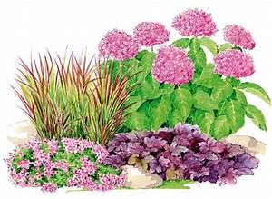 exceptionnel idee de plantation pour jardin 4 de jardin With idee de plantation pour jardin