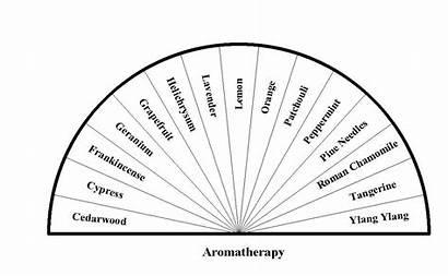 Pendulum Charts Bing Board Crystal Health Chart