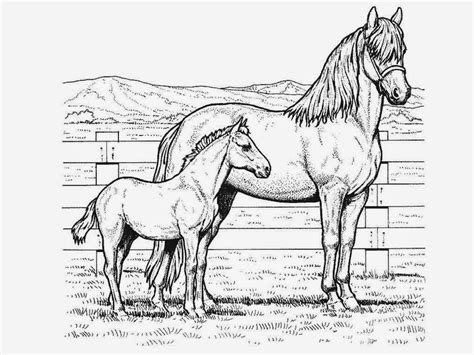 Kleurplaat Horses by Great Coloring Pages New Coloring Pages