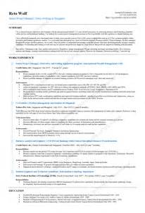 project management functional resume functional project manager resume