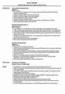 Programmer Resume Template 2014 Cosmetic Account
