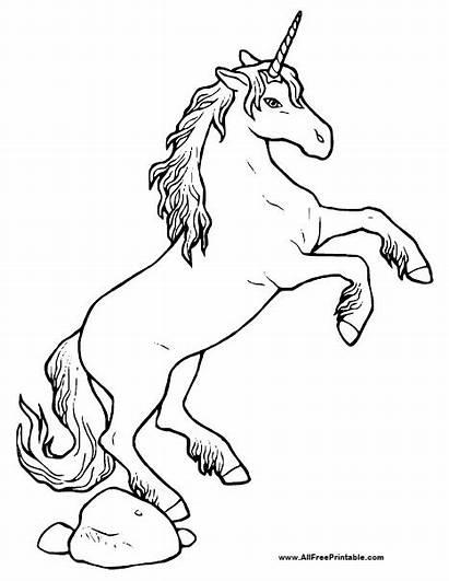 Unicorn Coloring Printable Pages Allfreeprintable Printables Books