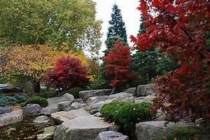 Japanischer Garten Hamburg : bild vom japanischen garten in planten un blomen foto vom faecherahorn mit tiefroten ~ Markanthonyermac.com Haus und Dekorationen