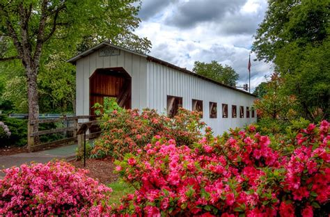 cottage grove or 11 top tourist attractions in eugene oregon