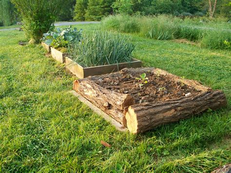 hewn logs provide walls for a raised bed while