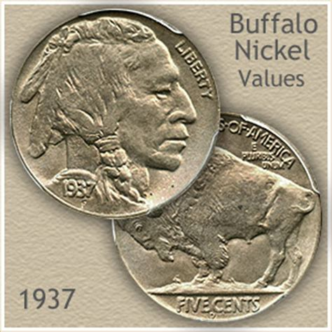 how much are buffalo nickels worth 1937 nickel value discover your buffalo nickel worth