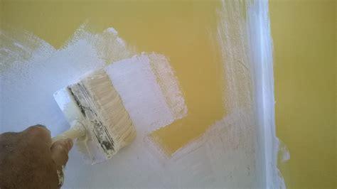 peinture a la chaux la peinture 224 la chaux espace architectes et immobiliers