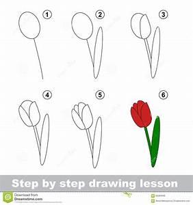 Cours De Dessin Comment Dessiner Une Tulipe Illustration