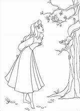 Aurora Coloring Princess Pages Sleeping Beauty Template Widget sketch template