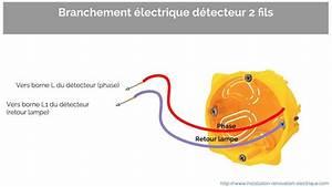 Detecteur De Fil Electrique : installer un d tecteur 2 fils sans neutre ou 3 fils la ~ Dailycaller-alerts.com Idées de Décoration