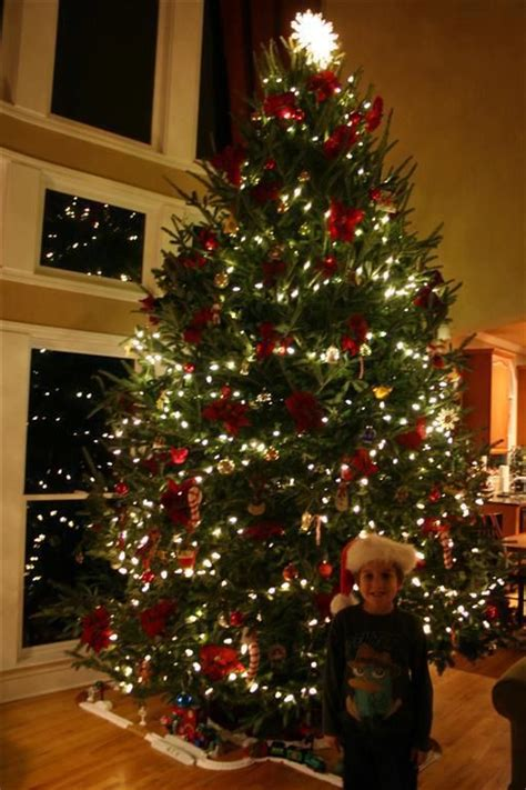 8 best real decorated christmas trees images on pinterest