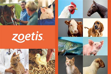 Zoetis Animal Science and Health on American Farmer TV Series