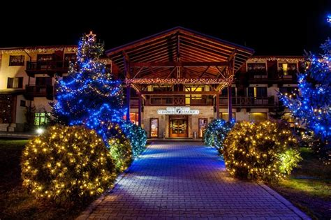 high quality unique outdoor christmas led lights buy