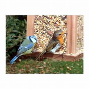Graines De Tournesol Pour Oiseaux : m lange de graines de fruits et d 39 insectes pour les ~ Dailycaller-alerts.com Idées de Décoration