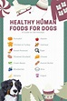 List of Human Foods Your Dog Can Eat this Holiday Season