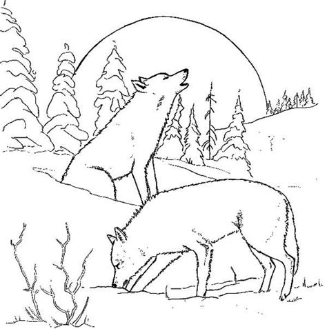 Wolf Couples Coloring Pages