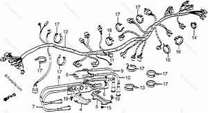 Honda V65 Magna Wiring Diagram