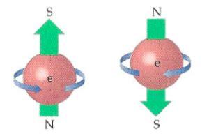 spin  quantum particles defined  plain english